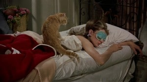 lady sleeping with a cat