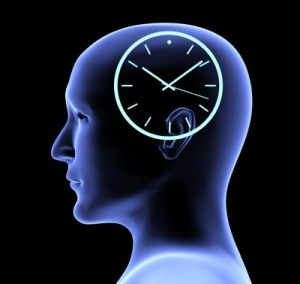 internal brain clock