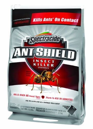 best ant killer for lawns