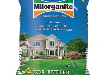 best nitrogen fertilizer