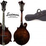 best mandolin under 1000