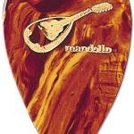 best mandolin picks